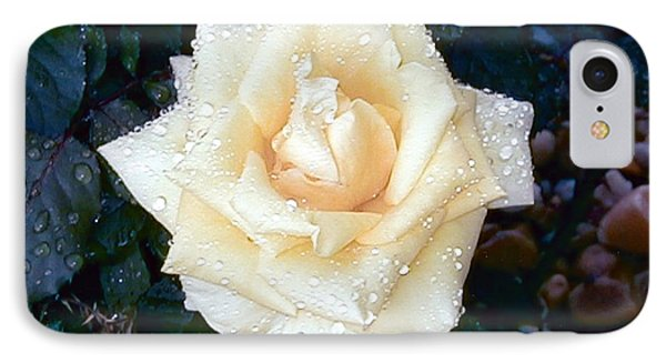 IPhone Case featuring the photograph Yellow Rose At Dawn by Alys Caviness-Gober