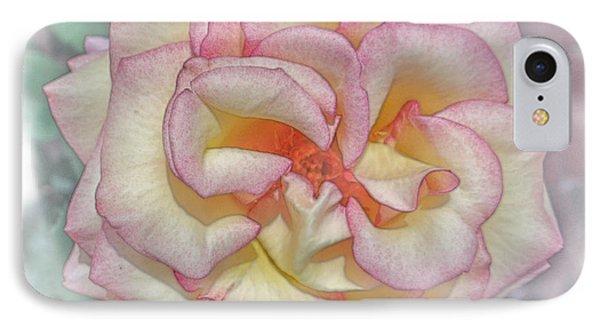 Yellow Rose Of Florida IPhone Case