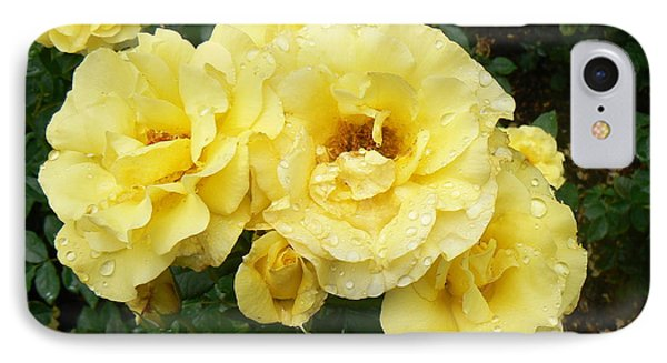 Yellow Rose Of Pa IPhone Case by Michael Porchik