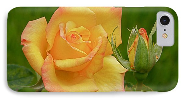 IPhone Case featuring the photograph Yellow Rose With Bud by Debby Pueschel