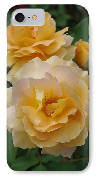 IPhone Case featuring the photograph Yellow Roses by Marilyn Wilson