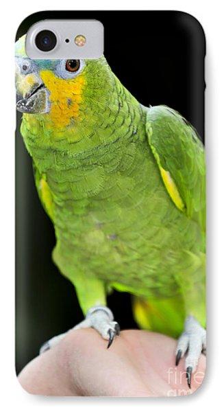 Yellow-shouldered Amazon Parrot Phone Case by Elena Elisseeva