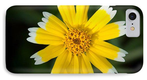 Yellow Sunshine  IPhone Case by Gandz Photography