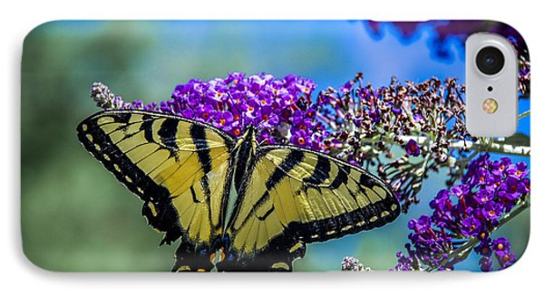 IPhone Case featuring the photograph Yellow Swallowtail by Phil Abrams