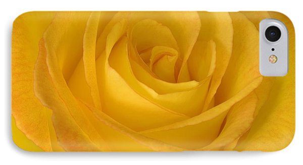 Yellow Tea Rose Phone Case by John Pitcher