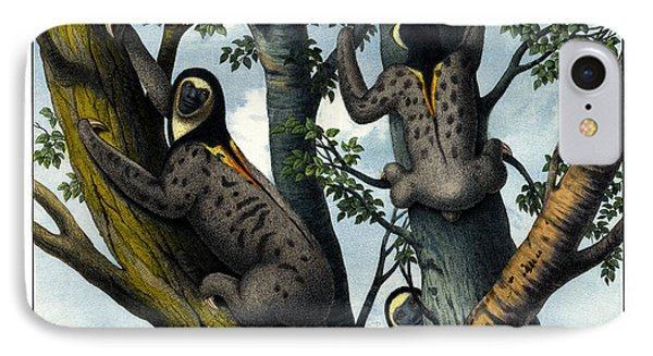 Yellow Throated Sloth IPhone Case