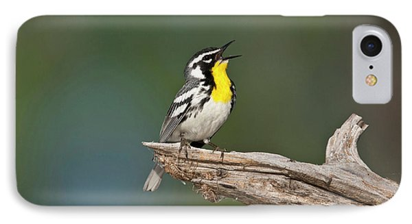 Yellow-throated Warbler (dendroica IPhone Case