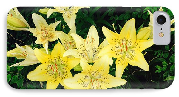 IPhone Case featuring the photograph Yellow Tiger Lilies by Doug Kreuger