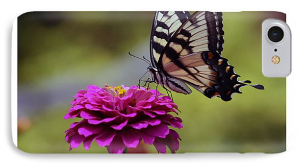 Yellow Tiger Swallowtail Butterfly IPhone Case by Kay Novy