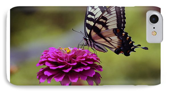 IPhone Case featuring the photograph Yellow Tiger Swallowtail Butterfly by Kay Novy