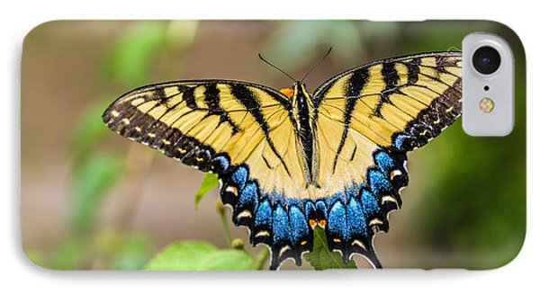 Yellow Tiger Swallowtail IPhone Case by Debbie Green
