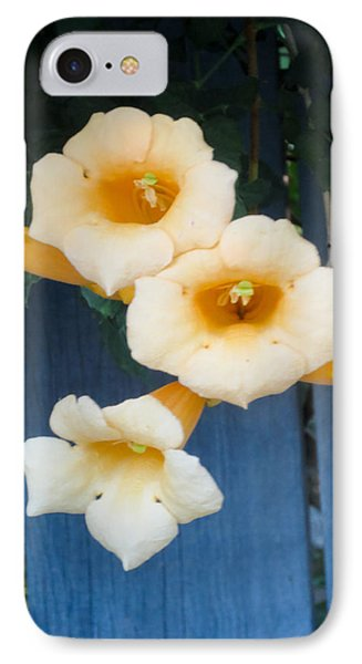 Yellow Trumpet Blooms 03 IPhone Case