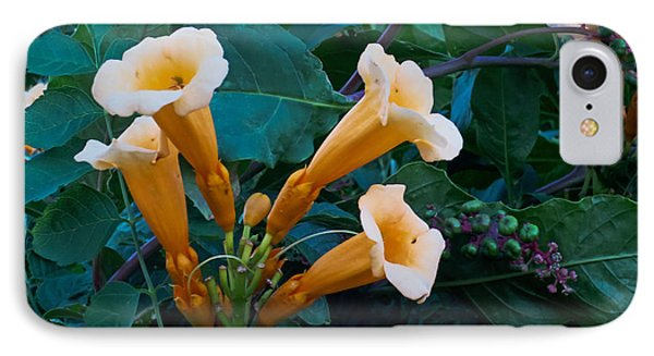 Yellow Trumpet Blooms 04 IPhone Case