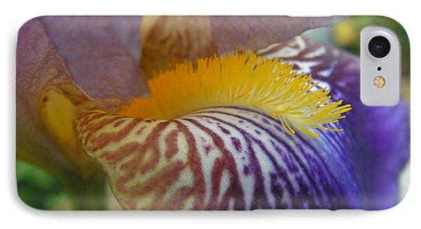 Yellow Tuft IPhone Case by Cheryl Hoyle
