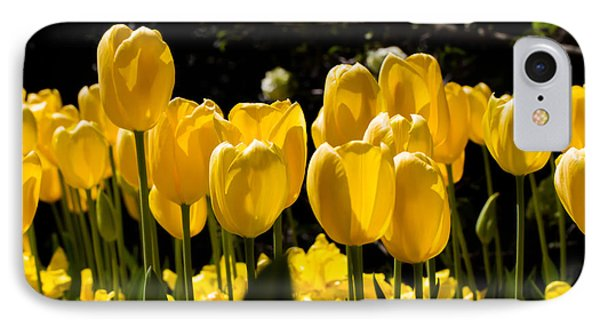 Yellow Tulip Attention IPhone Case