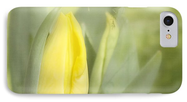 Yellow Tulip Bud Phone Case by Kim Hojnacki