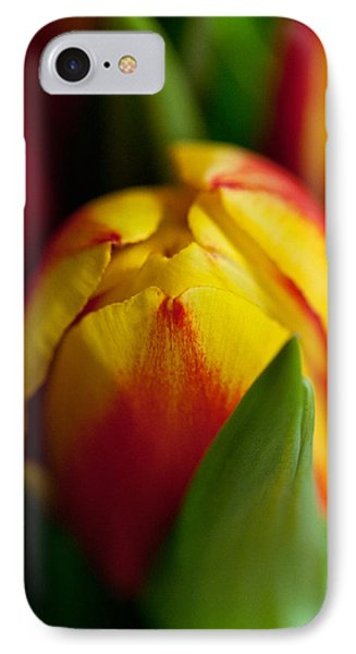 IPhone Case featuring the photograph Yellow Tulip by Sabine Edrissi