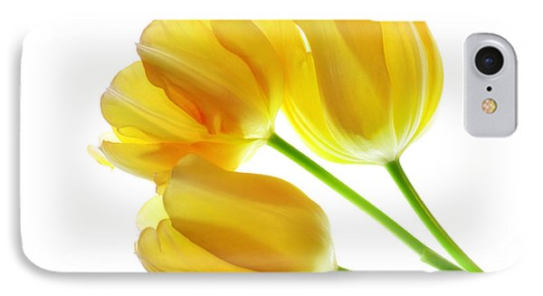 Yellow Tulips Phone Case by Charline Xia