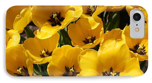 IPhone Case featuring the photograph Golden Tulips In Full Bloom by Dora Sofia Caputo Photographic Art and Design