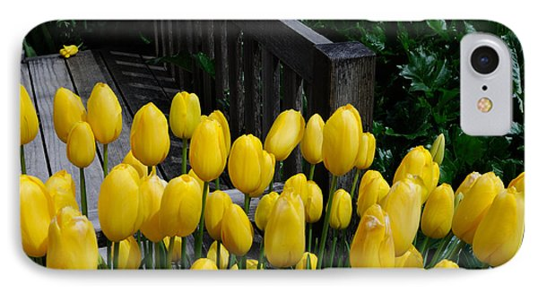 IPhone Case featuring the photograph Yellow Tulips by Haleh Mahbod