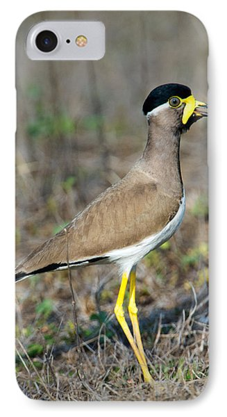 Yellow-wattled Lapwing Vanellus IPhone 7 Case by Panoramic Images