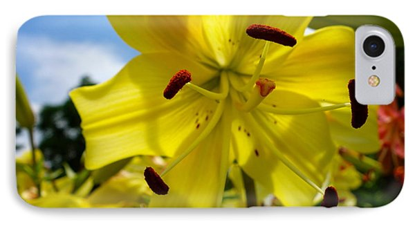 Yellow Whopper Lily 2 IPhone Case by Jacqueline Athmann