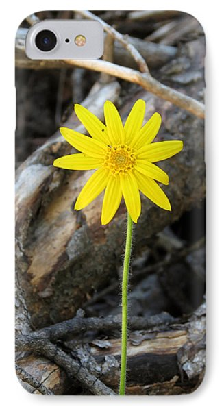 IPhone Case featuring the photograph Yellow Wildflower by Laurel Powell