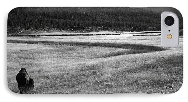 Yellowstone Bison Wyoming IPhone Case by Aidan Moran