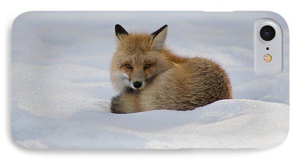 Yellowstone Fox # 2 IPhone Case
