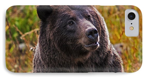 Yellowstone Griz IPhone Case by Mark Kiver