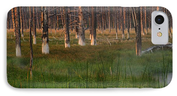 IPhone Case featuring the photograph Yellowstone Mysterious Morning by Teresa Zieba