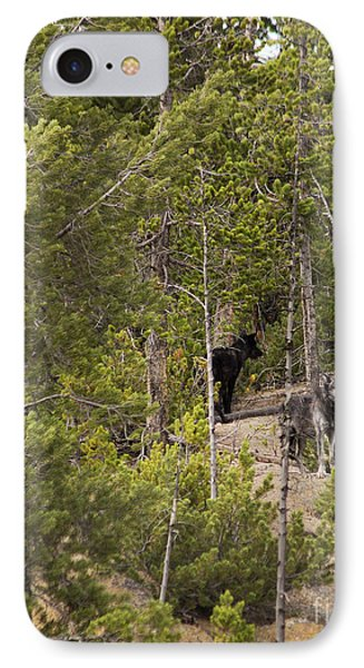 IPhone Case featuring the photograph Yellowstone Wolves by Belinda Greb