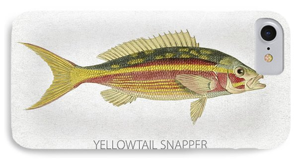 Yellowtail Snapper IPhone Case by Aged Pixel
