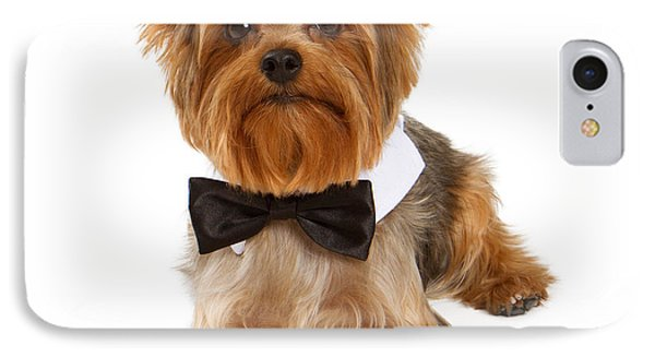 Yorkshire Terrier Dog With Black Tie IPhone Case by Susan Schmitz