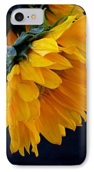 IPhone Case featuring the photograph You Are My Sunshine by Brenda Pressnall