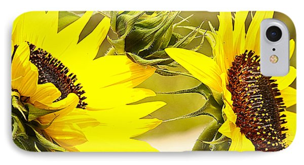 IPhone Case featuring the photograph You Are My Sunshine.... by Tammy Schneider