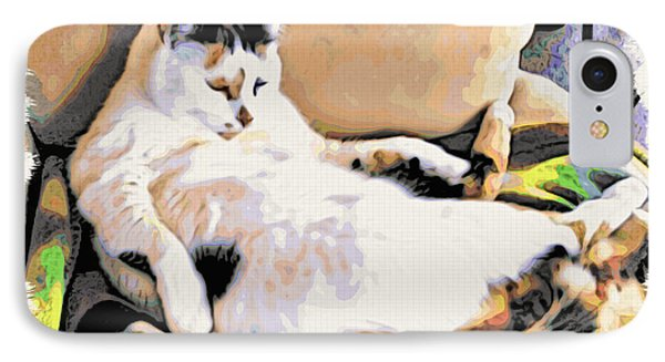 You Move The Stuff From The Corrner. I Need My Nap. Phone Case by Phyllis Kaltenbach