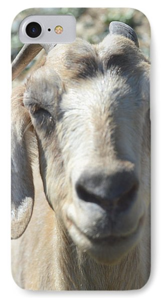 You Old Goat IPhone Case
