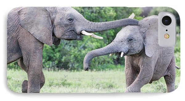 Young African Elephants Playing IPhone Case by Peter Chadwick