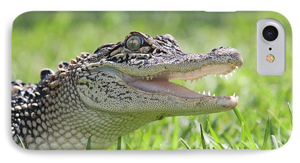 Young Alligator With Mouth Open IPhone 7 Case by Piperanne Worcester
