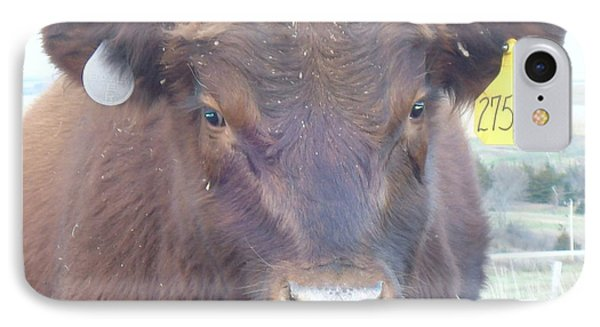 IPhone Case featuring the photograph Young Angus by J L Zarek