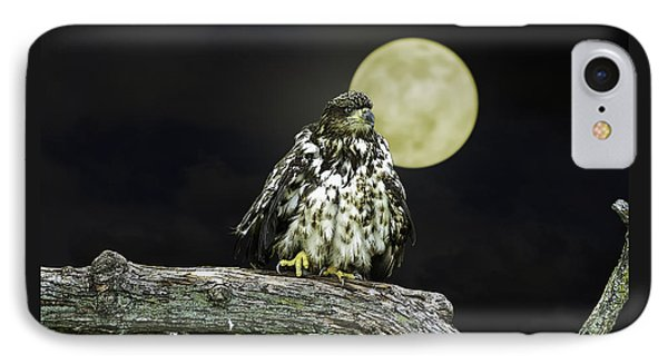 IPhone Case featuring the photograph Young Bald Eagle By Moon Light by John Haldane