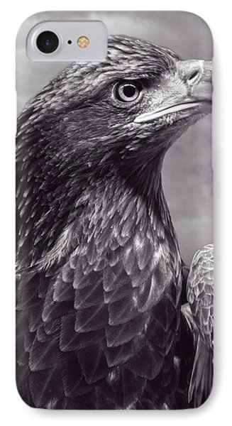 Young Bald Eagle V3 Phone Case by F Leblanc