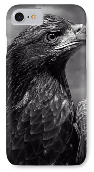 Young Bald Eagle V4 Phone Case by F Leblanc