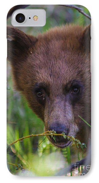 Young Black Bear Phone Case by Mitch Shindelbower