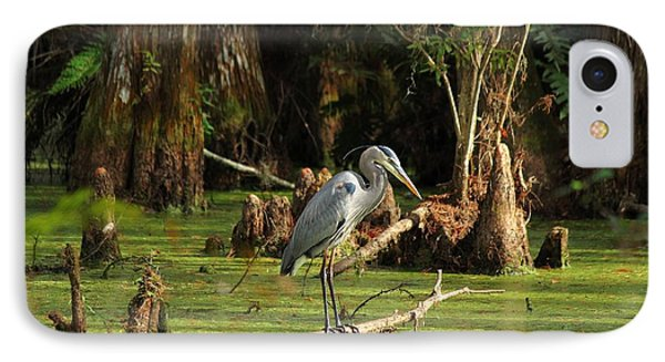 Young Blue Heron IPhone Case by Theresa Willingham