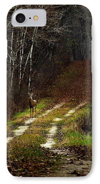 Young Buck And Autumn Phone Case by Thomas Young