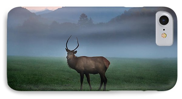 Young Bull Elk In The Pasture IPhone Case