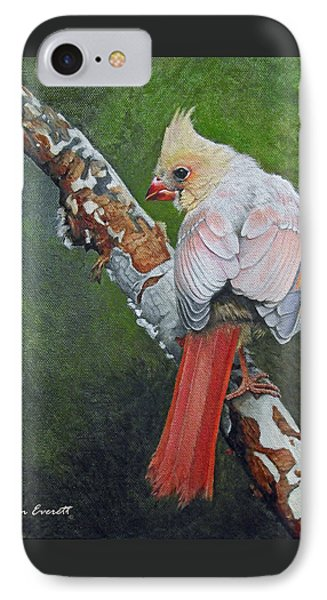 Young Cardinal  IPhone 7 Case by Ken Everett