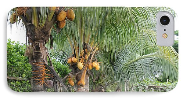 IPhone Case featuring the photograph Young Coconut Trees by Cyril Maza
